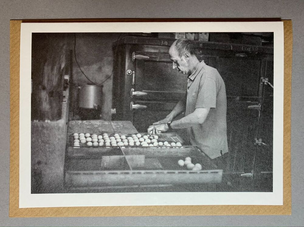 Jeffrey Todd transferring eggs for hatching.
