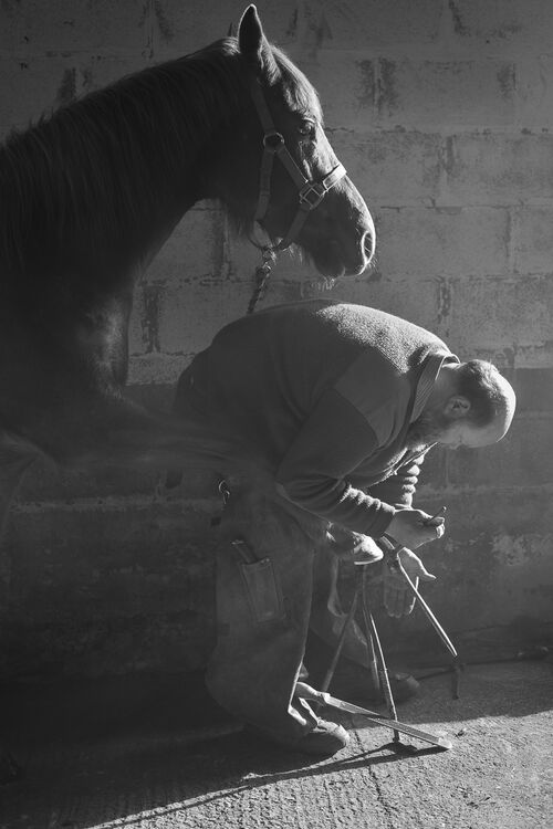 Master Farrier (2nd round Taylor Wessing Photographic Portrait Prize)
