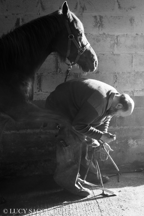 Master Farrier, March 2014. 2nd ROUND TAYLOR WESSING PHOTOGRAPHIC PORTRAIT PRIZE, National Portrait Gallery, London.