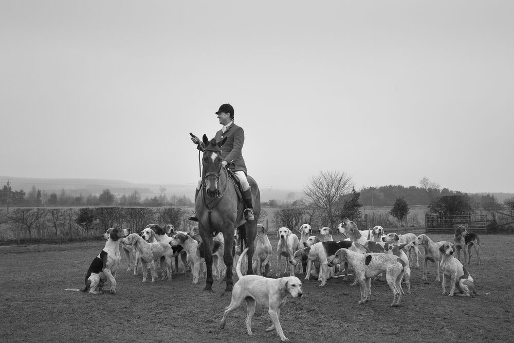 Master of Foxhounds