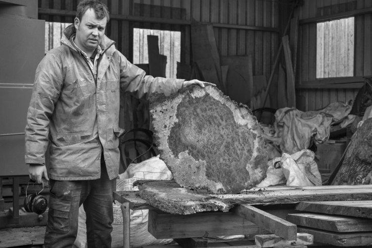 Tom Wall with burr oak, Ampleforth sawmill