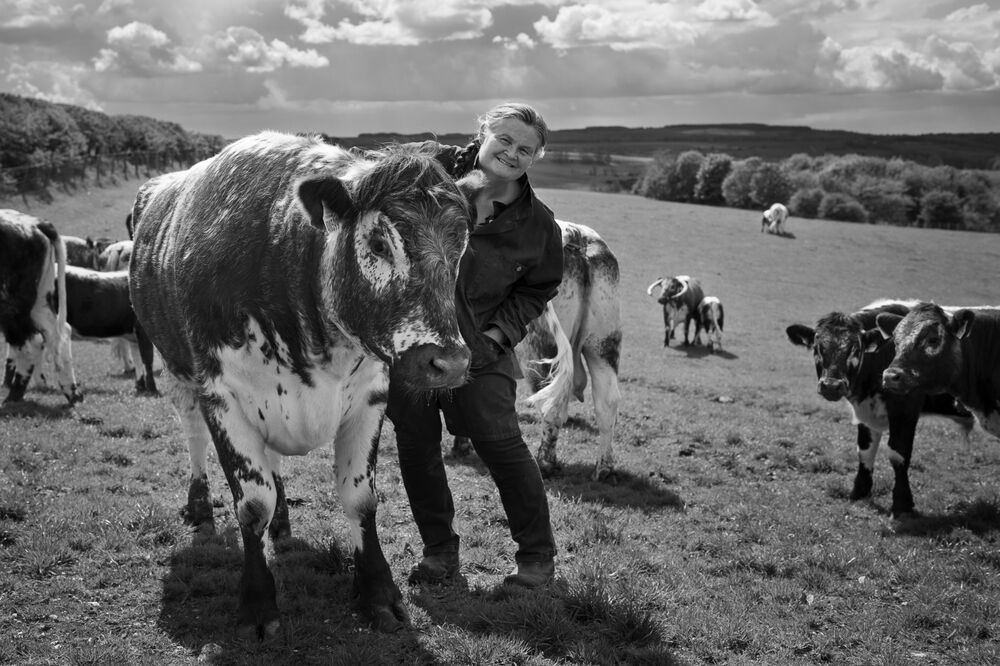 Ruth Russell with her pedigree longhorns, Duggleby, North Yorkshire.