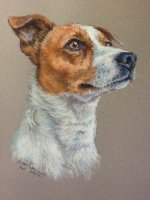 Dog Pastel Portraits