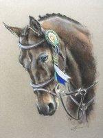 Horse Pastel Portraits