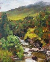 Dartmoor adventure