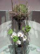 topiary design