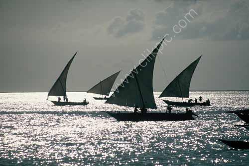 Silver Sea, Nungwi