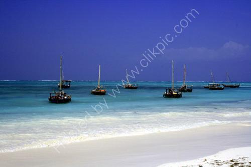 Indian Ocean, Zanzibar