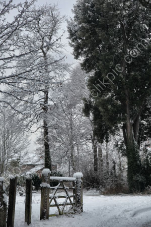 Uphill - snow