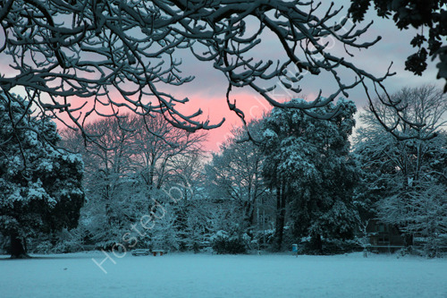 Ellenborough Park - snow