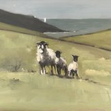Roseland sheep - click on image for more details