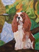 Oscar, oil on canvas, 20x16in