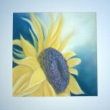 "Sunflower I 10"" x 10"" (in metal frame size 12"" x 12"") Pastel - £95"