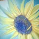 "Sunflower II 8"" x 8"" (in metal frame size 12"" x 12"") Pastel - £85"