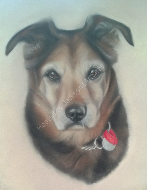 """Bobby"" 10 x 8 in. This was done for the winner of a raffle in aid of a dog rescue charity"