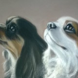 "Casper and Ozzy 111/2"" x 8"" Pastel"