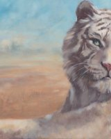 """White Tiger (Oil on Canvas, size 30"""" x 20"""" unframed)"""