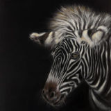 """Black Magic (Pastel not for sale) 16"""" x 12"""" Prints & Cards Available"""