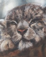"""Snow Leopard SOLD (Oil on canvas, size 16"""" x 12"""" unframed)"""
