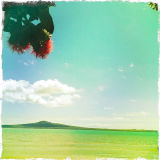 Rangitoto in Summer