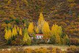 Beautiful Autumn Iceland
