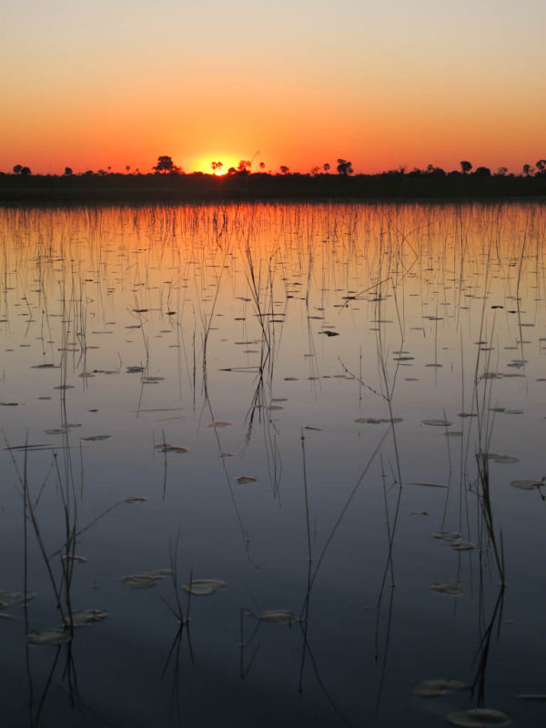 Sunset on the Okavango Delta