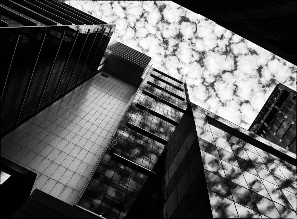 Sydney -looking up!
