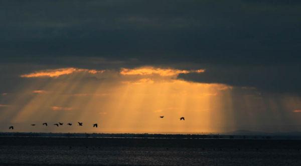 Sunrise - Lake Manyara