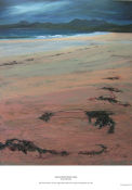 sand and weed, Mellon Udrigle
