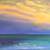 Isle of May evening