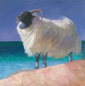 Noreen's windswept, woolly jumper