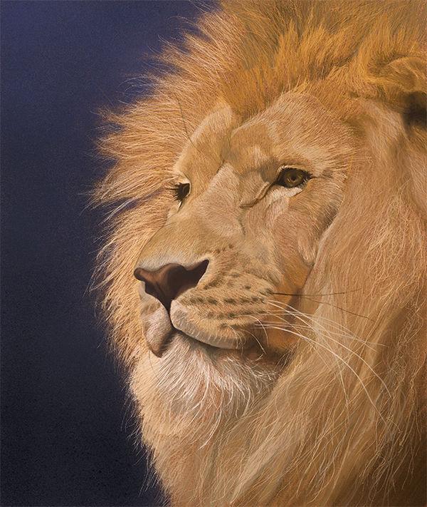 the golden king  PRINT 27x22.7cms