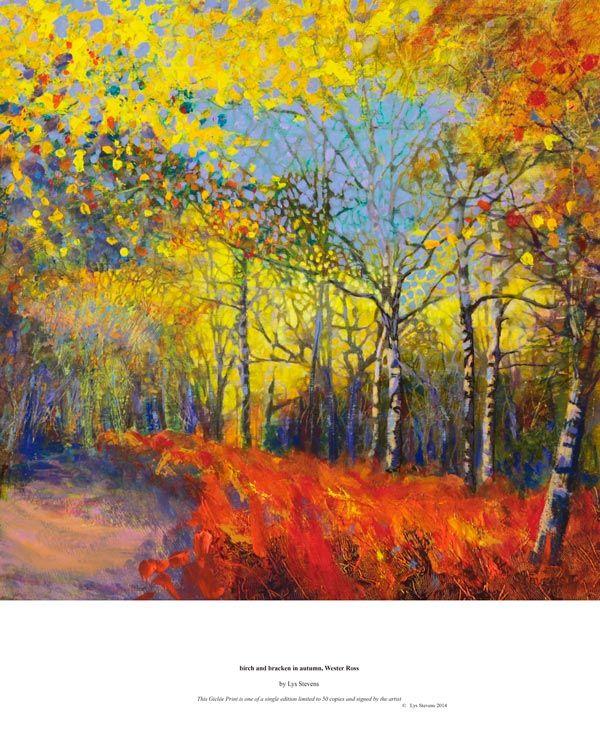 birch and bracken in autumn, Wester Ross PRINT 27x27cms