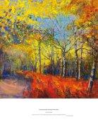 birch and bracken in autumn, Wester Ross