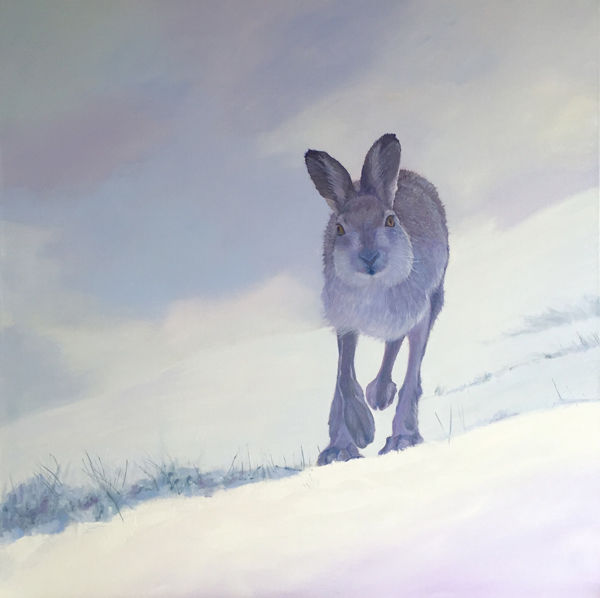 Eoghain's intrepid hare PRINT 27x27cms