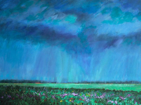 rainstorm over cabbages, Fife