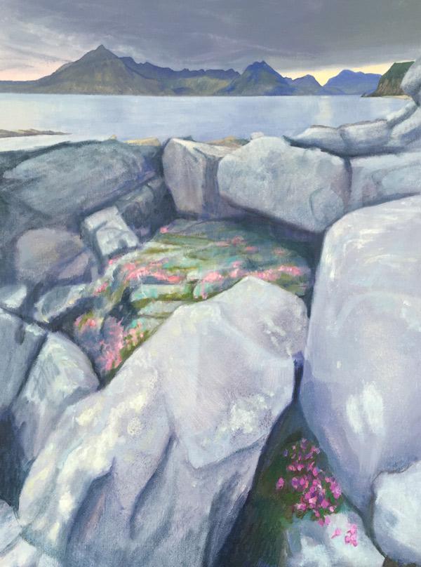 sea pink secret, Elgol, Skye