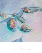 soft flow round sea stones