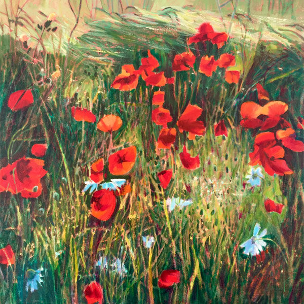 sunlight, poppies and grasses PRINT 27x27cms