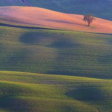 2003 Tuscany 03
