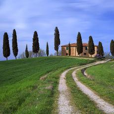 2006 Tuscany 06