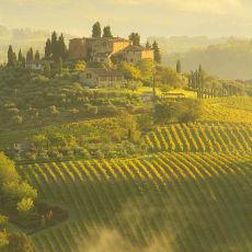 2012 Tuscany 12
