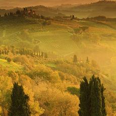 2013 Tuscany 13