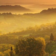 2014 Tuscany 14