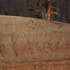5007 Cedar Breaks National Monument 01