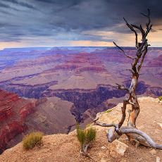 5015 Grand Canyon National Park 06