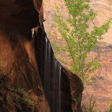 5028 Zion National Park 02