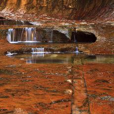 5029 Zion National Park 03