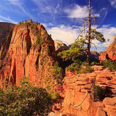 5034 Zion National Park 08