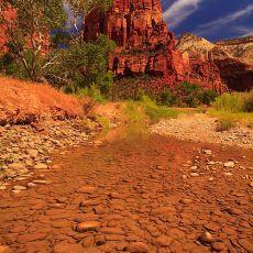 5035 Zion National Park 09
